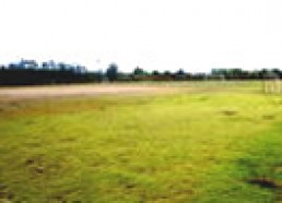 สนามฟุตบอล สนามฟุตบอลขนาดมาตรฐาน อยู่บริเวณด้านหน้าของมหาวิทยาลัย ใกล้กับโรงพละศึกษา